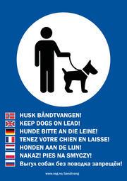 Båndtvangsplakat i A3 på flere språk.